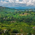 Ultimate Guide to Colombia's Coffee Region
