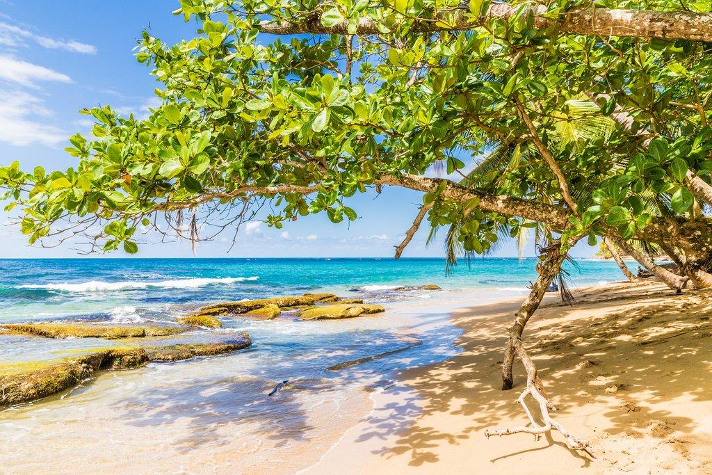 Punta Uva Beach on the Caribbean Coast