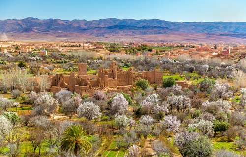 An old kasbah still stands in the desert
