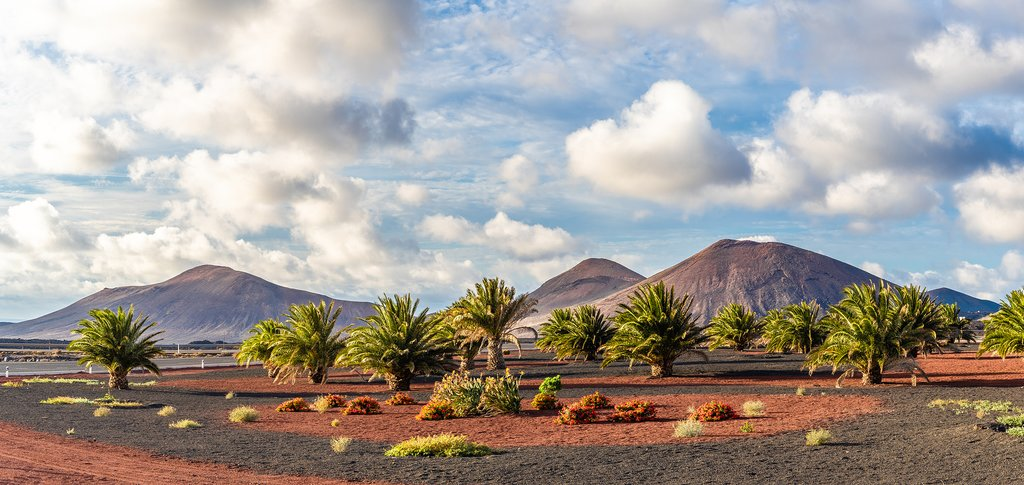 The Volcanoes of Timanfaya National Park