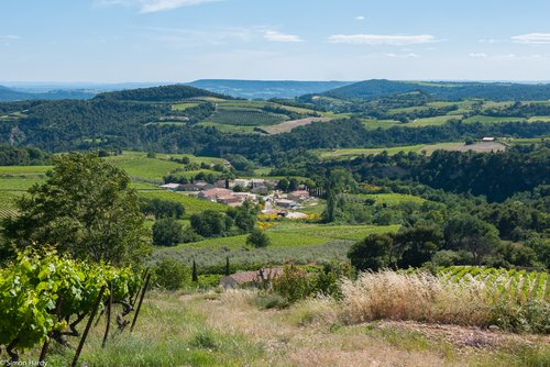 Southern Rhône valley, at the gates of Provence