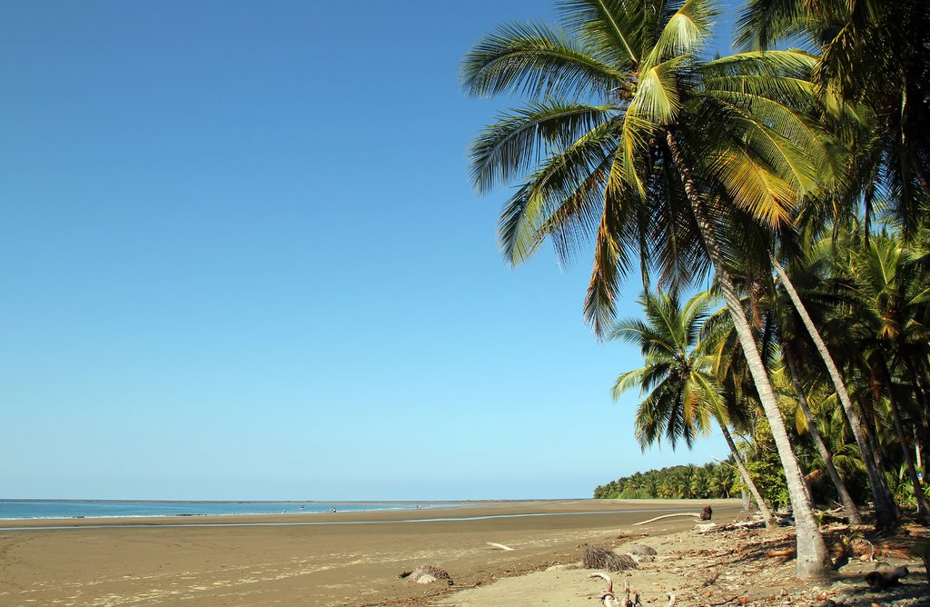 Marino Ballena National Park, Costa Rica