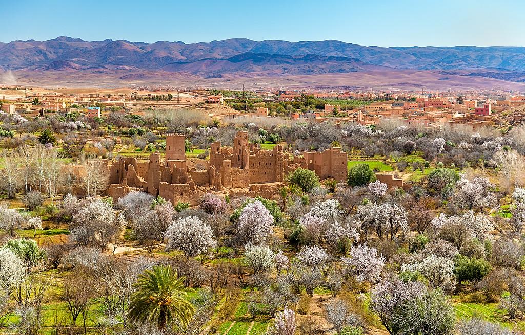 Grand Moroccan Tour