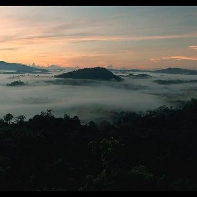 Borneo Adventure - 7 Days