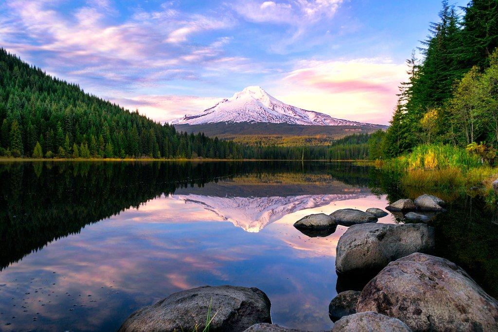 Mt. Hood Reflected on Trillium Lake