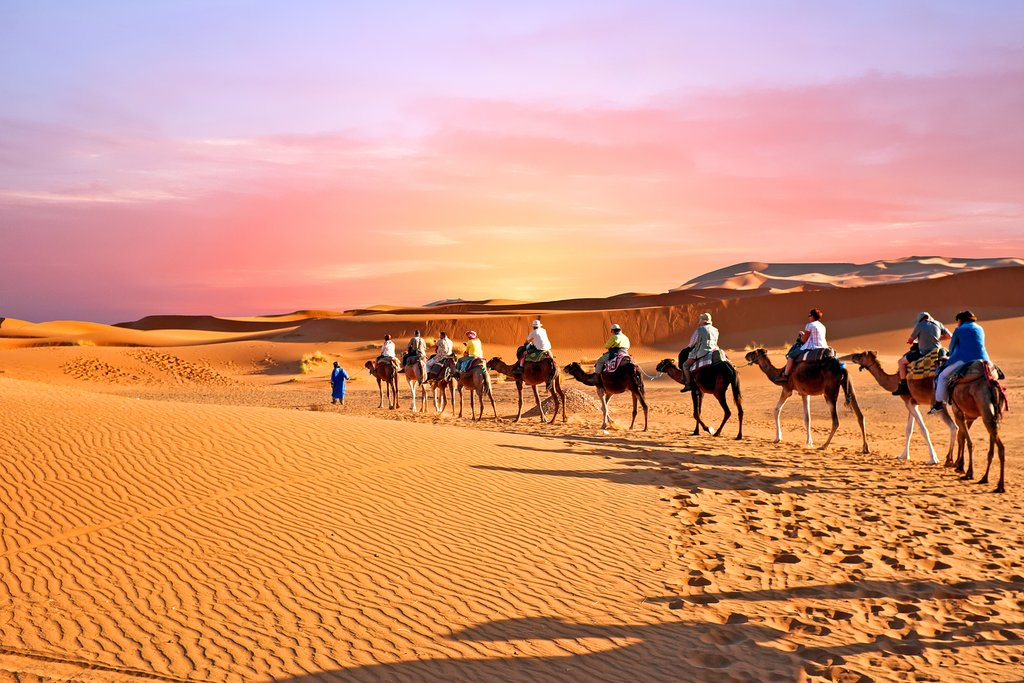 Camel caravan through the Moroccan desert