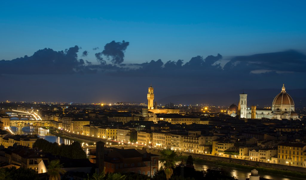 View of the Florence skyline