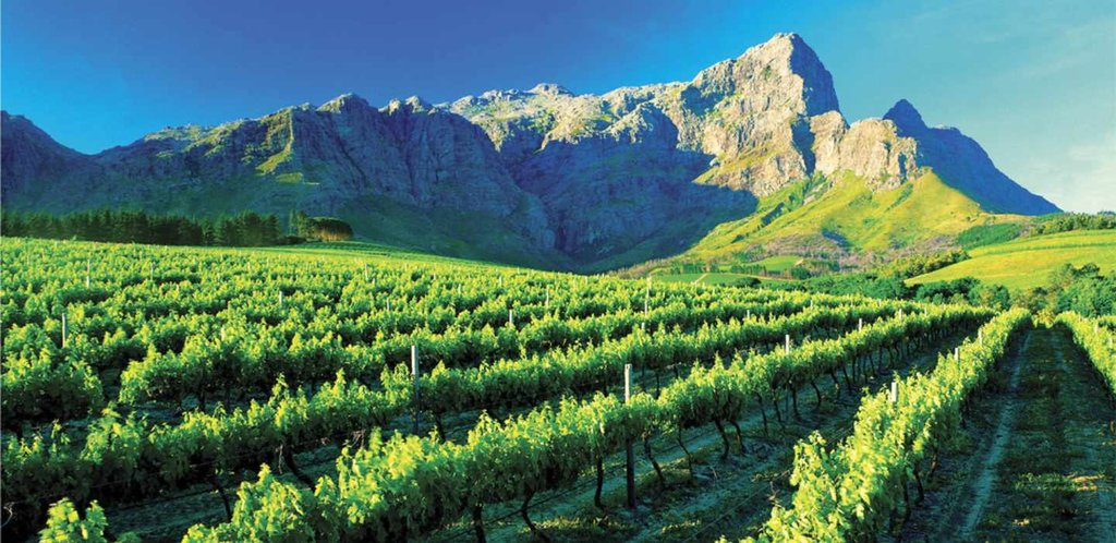 Food & Culture in Cape Town - 6 Days