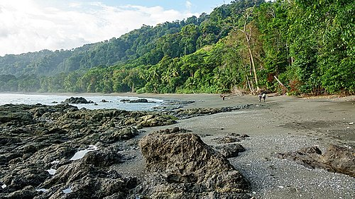 Coast of Corcovado National Park