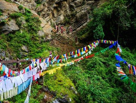 A mountainside hiking trail in Bhutan
