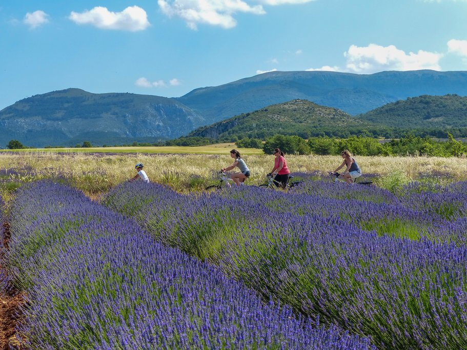 Mountainbike tour in the Verdon region, Provence