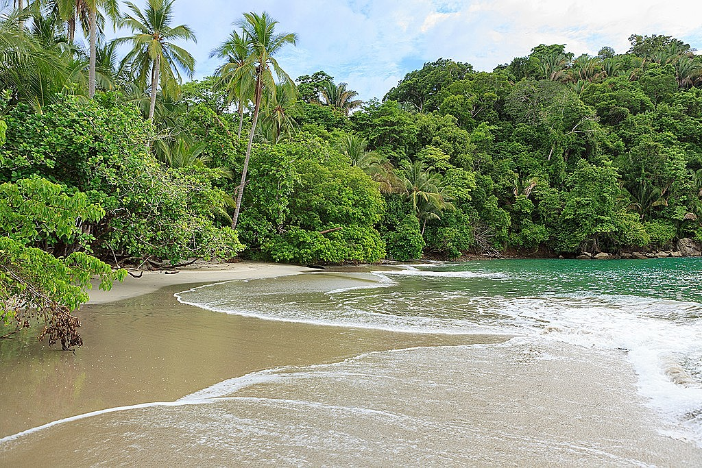 Manuel Antonio National Park on the Pacific Coast is known for its diverse wildlife and beautiful beaches