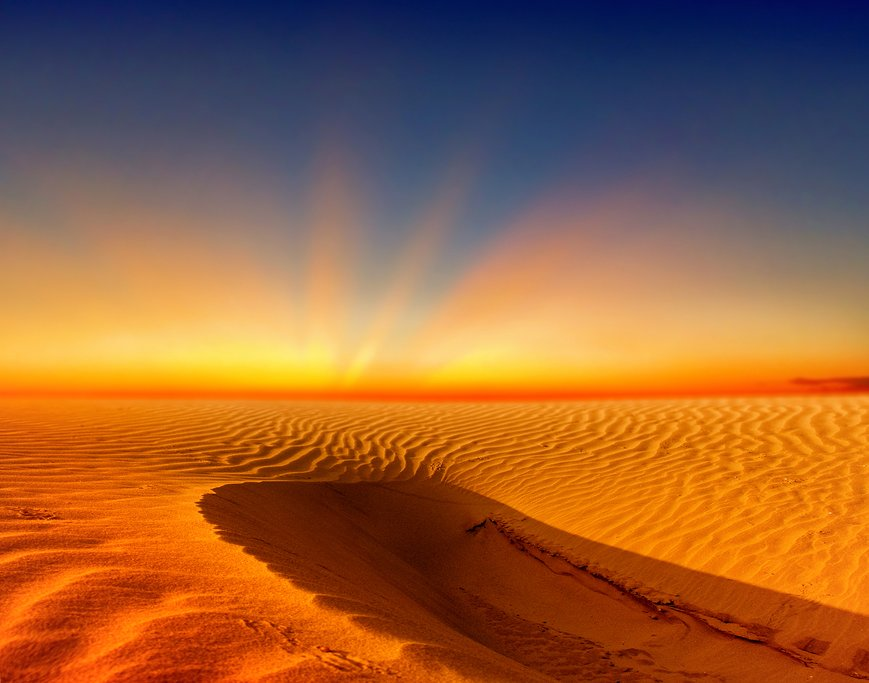Venture to the Sahara Desert