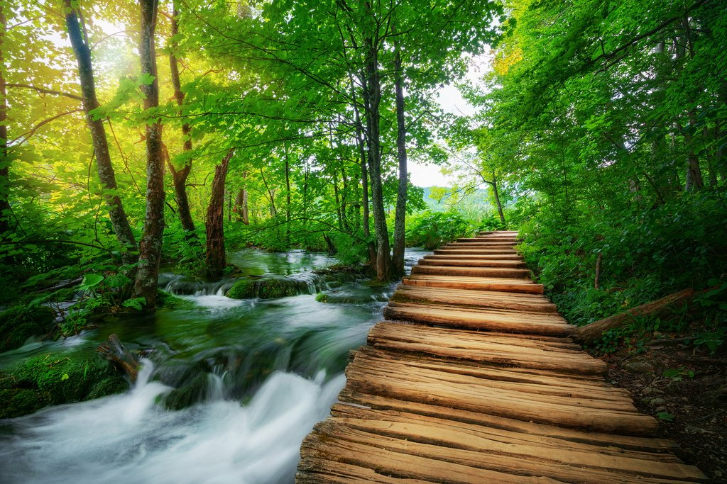 Wooden paths take you through Plitvice Lakes National Park
