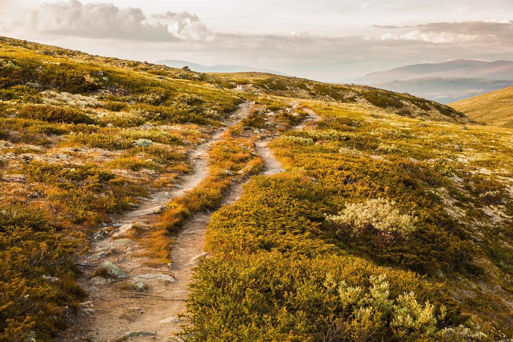 Scenery in the Norwegian highlands