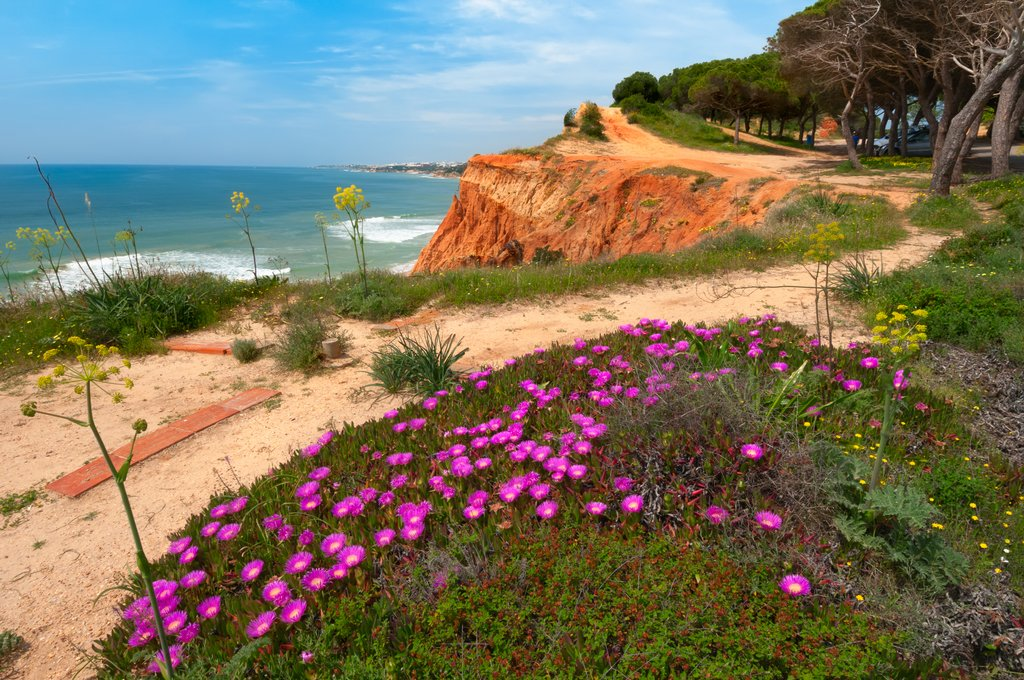 Beach paths along the Algarve's southern coast