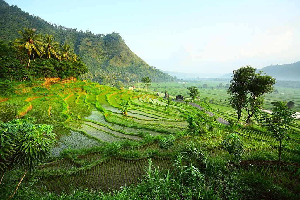 Indonesia in December: Travel Tips, Weather, and More