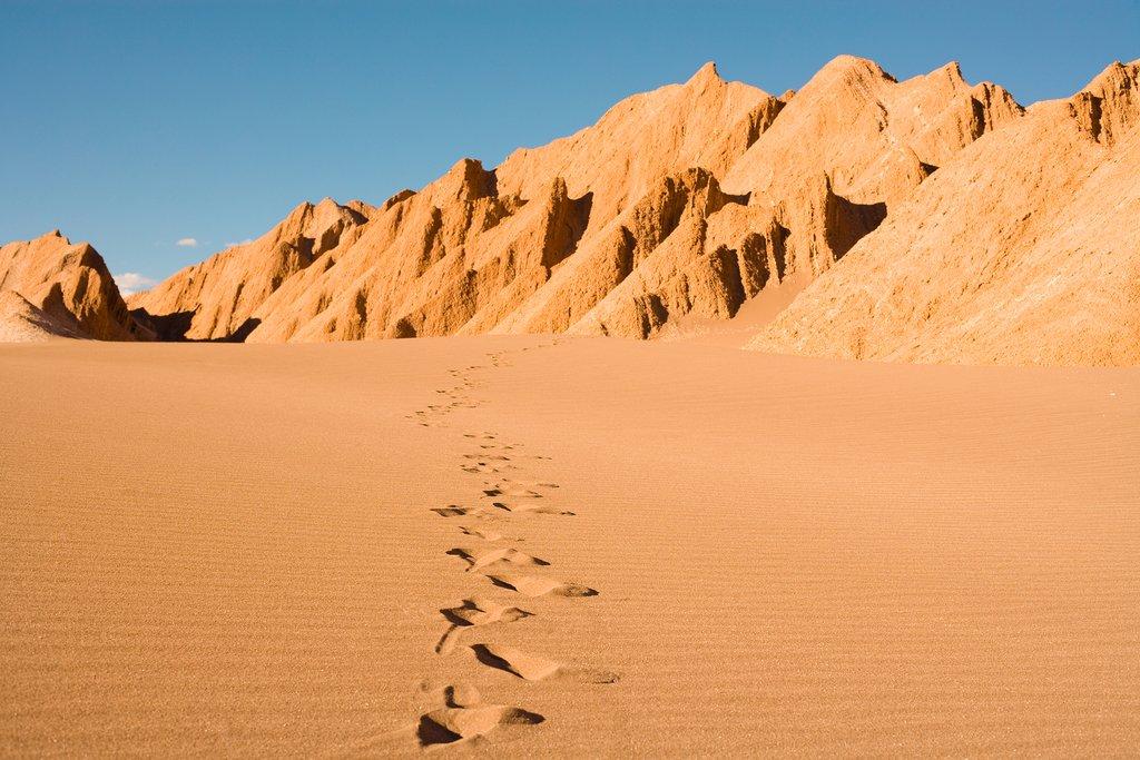Explore Chile's Atacama Desert