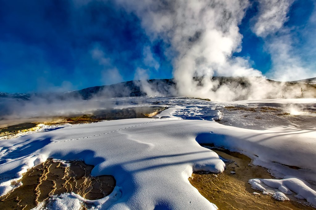 Geysers warm the land in Yellowstone National Park