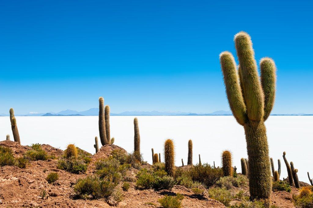 The great Uyuni Salt Flats