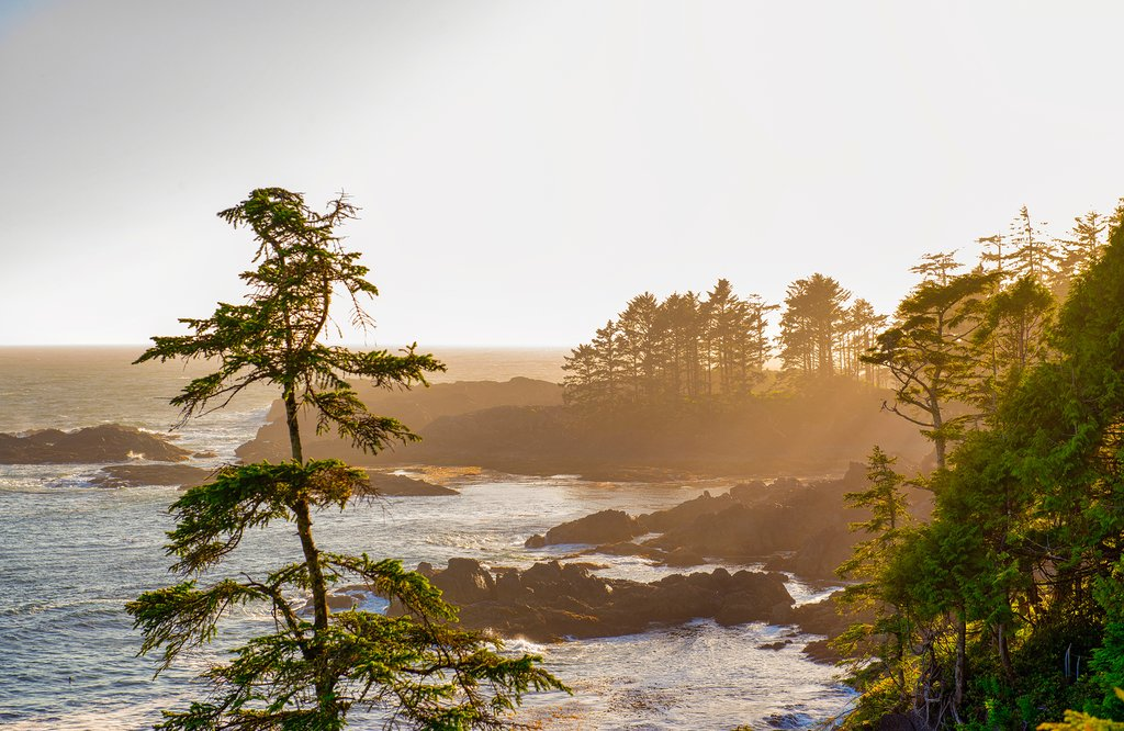Sunset on the Wild Pacific Trail, Ucluelet