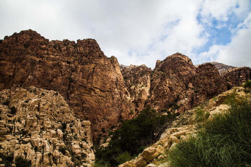 Explore the Dana Reserve's biodiversity (© Tala Dabain)