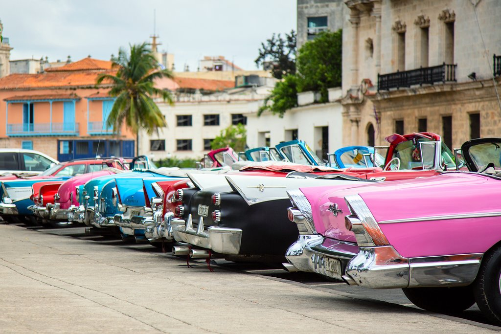 Classic cars lining the street in Havana