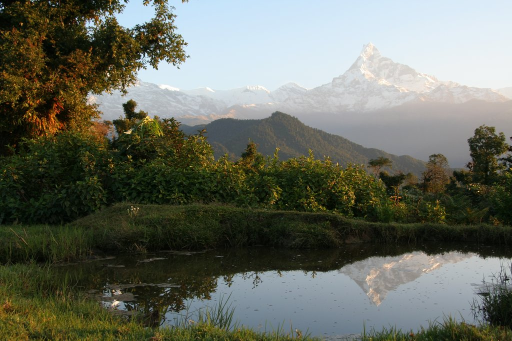 Beautiful views of the Himalaya