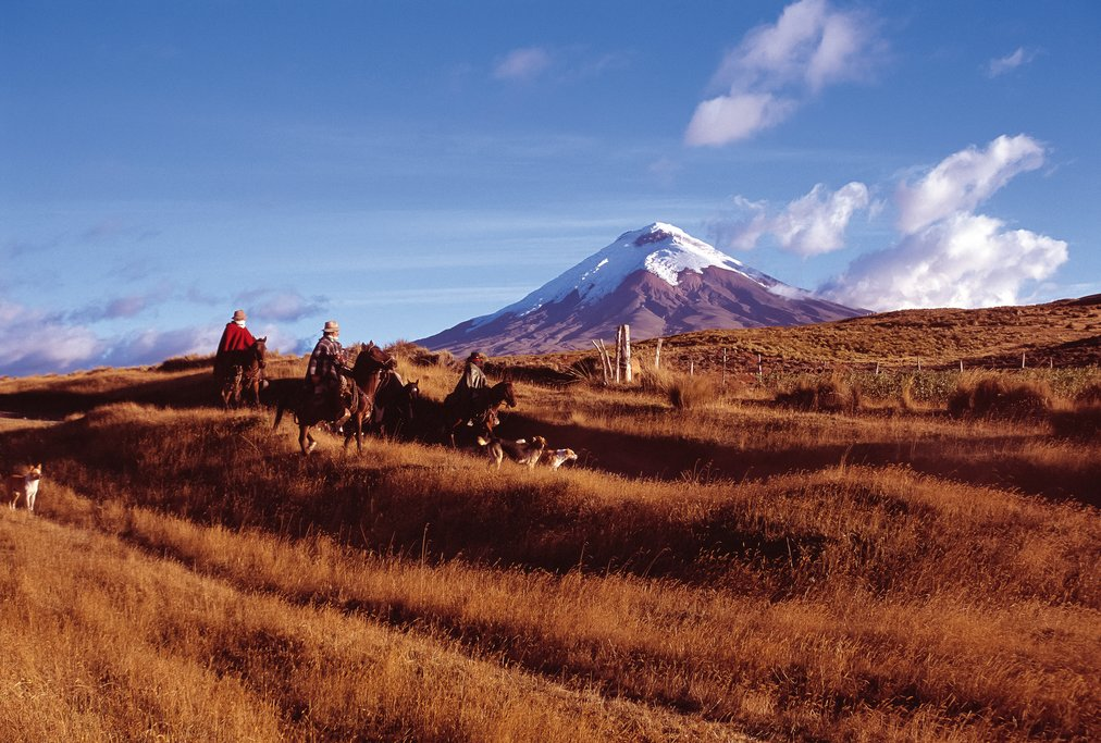 """Chagras"" Cowboys in Cotopaxi National Park"