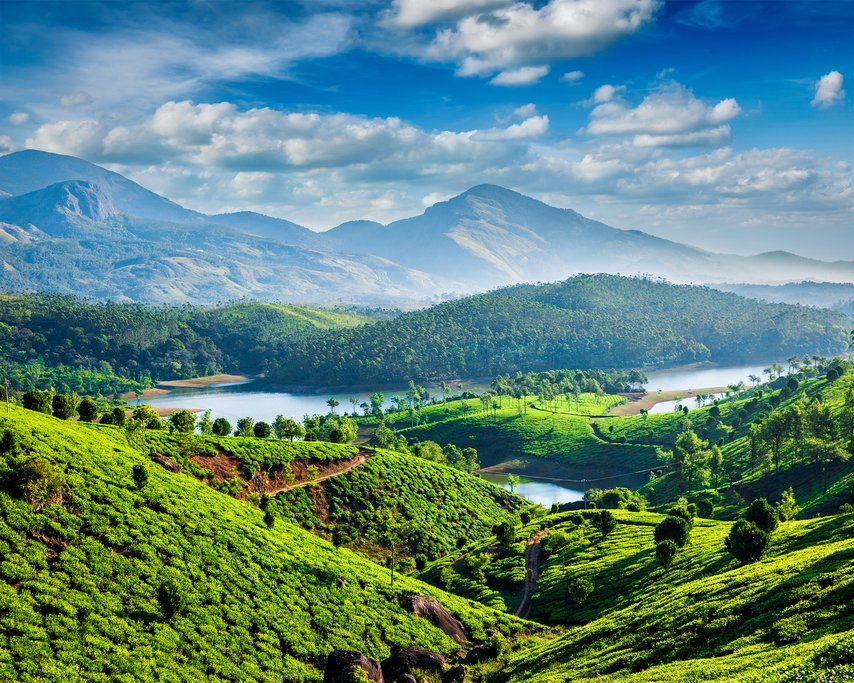 Tea and spice plantations near the hill station of Munnar