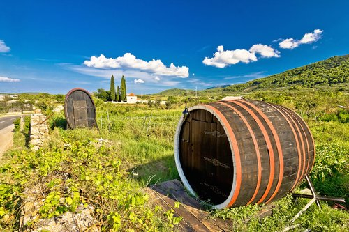 Wine Barrels on Hvar Island