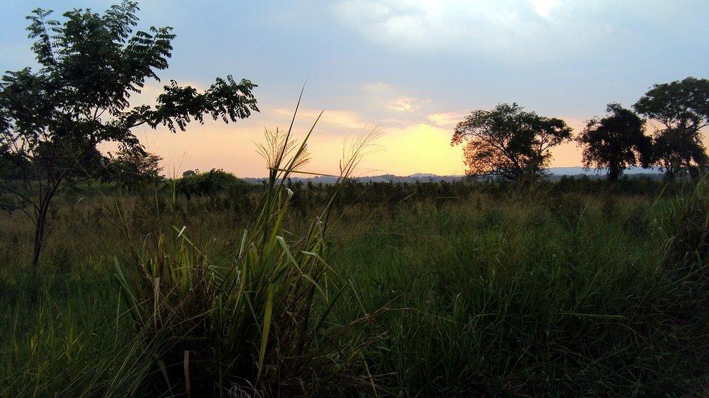 Sunset in Trincomalee (Photo courtesy of Pixabay)