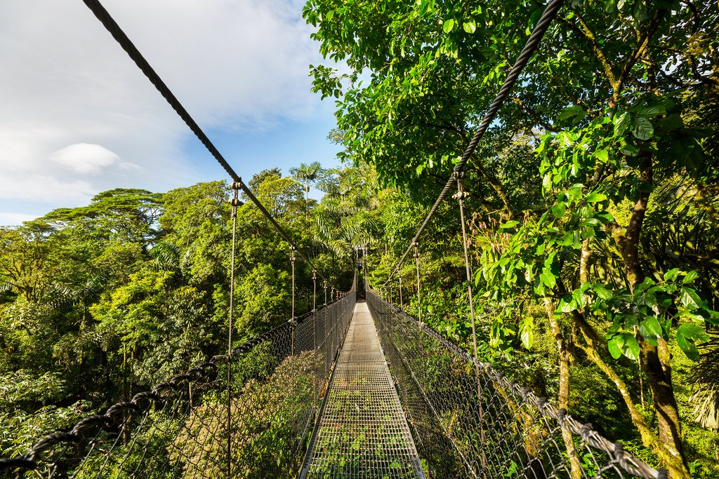 Hike through the rainforest canopy in Arenal Volcano National Park