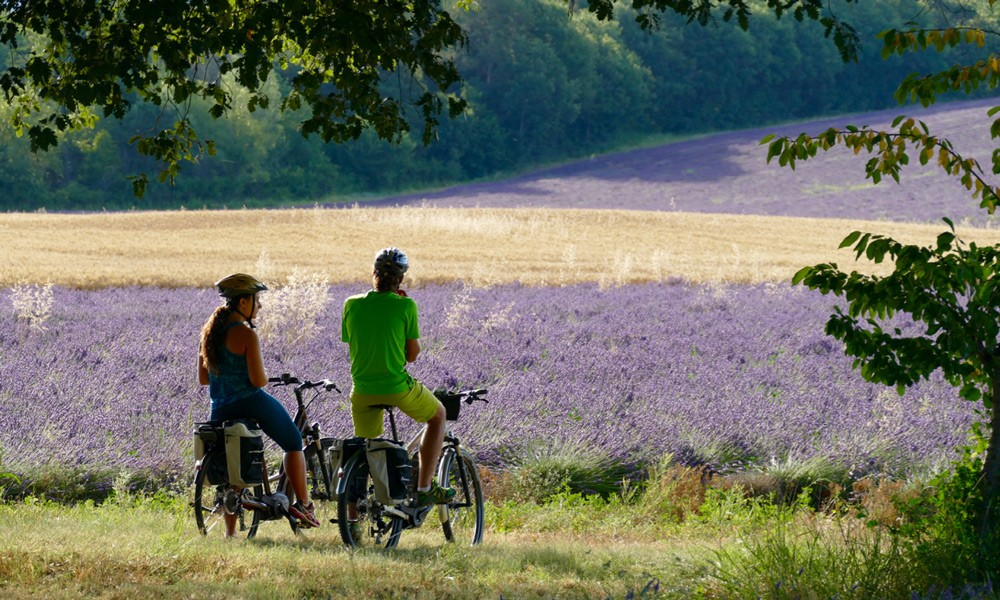 Hinterland Provence discovery by Ebike in summer