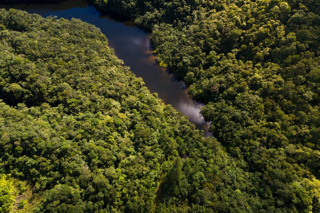 Colombia's Amazon Rainforest & Canyon Tour - 8 Days