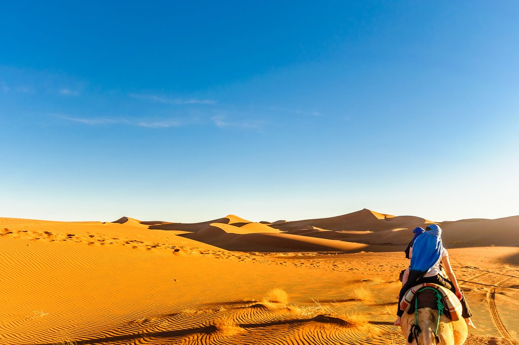 Desert landscapes in the Moroccan Sahara