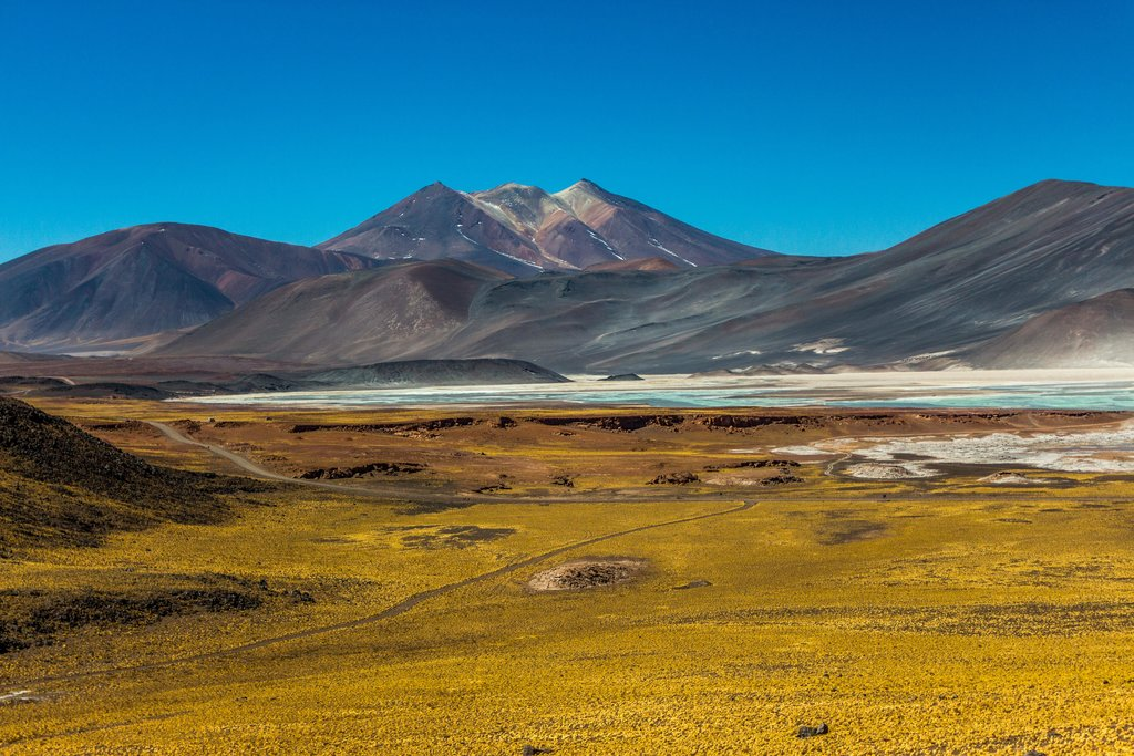 Panoramic view of Andean peaks and a mineral-rich lagoon in the Atacama region.