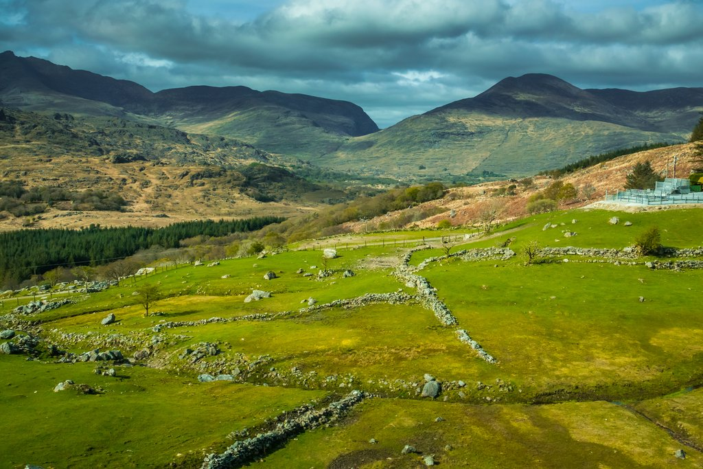 Along the Trail in Kerry