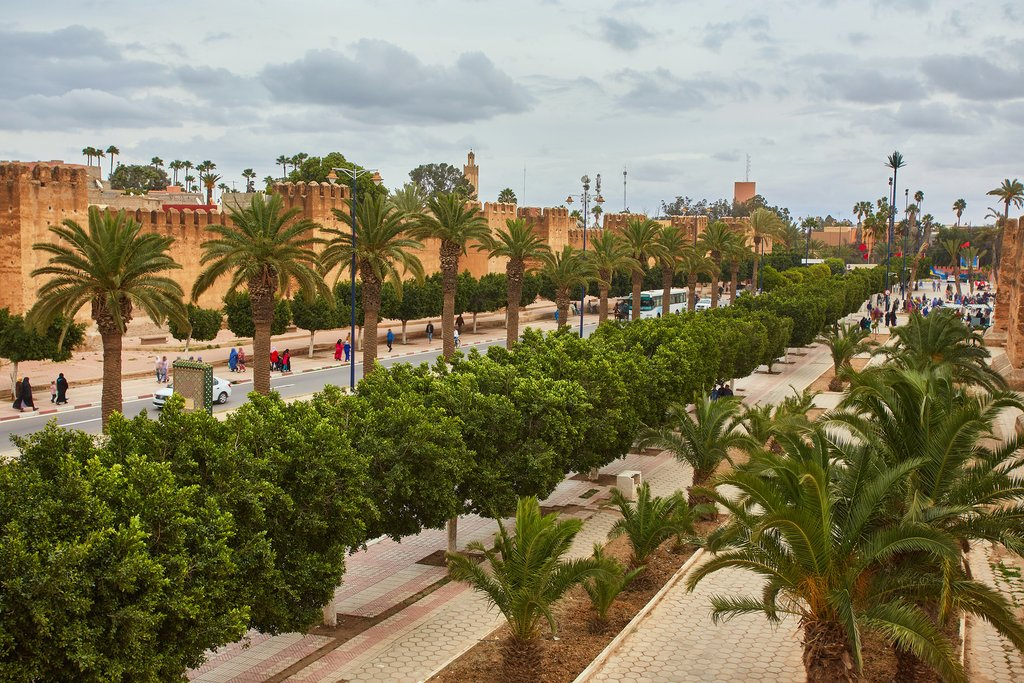 Palm trees line the fortified walls in Taroudant