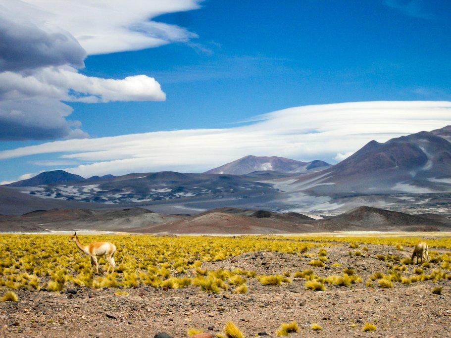 Landscape in Salta Province, Argentina