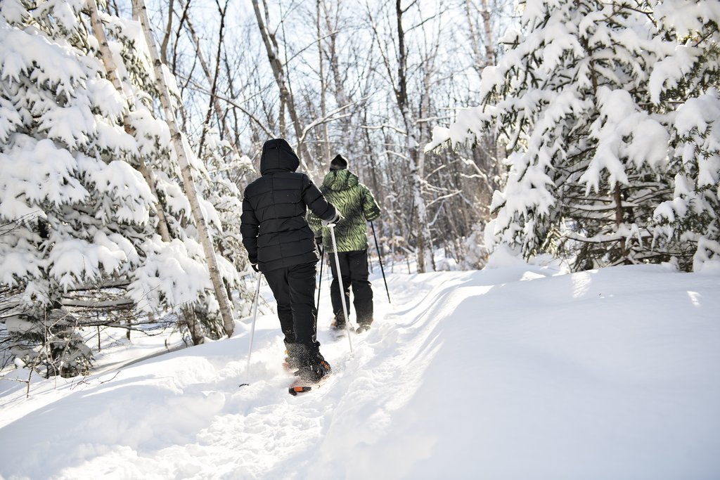 Trip Highlight: Snowshoeing in the Norikura Highlands
