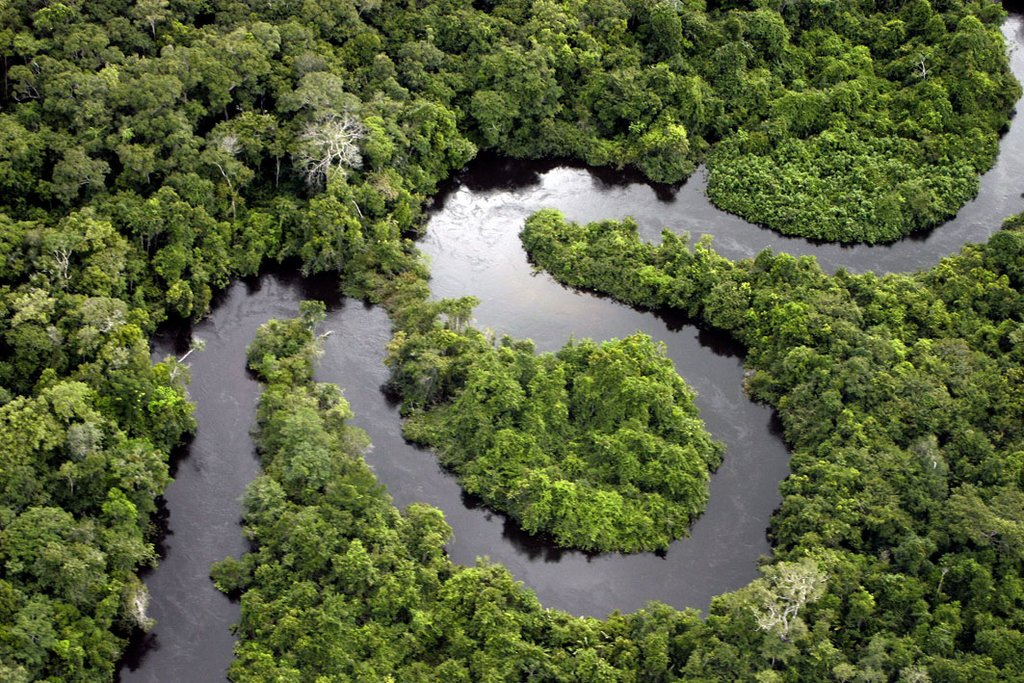 Discover the Peruvian Amazon - 5 Days