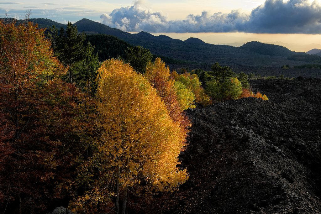 Take in the autumnal scenery as you explore the cooled lava flows on the slopes of Mount Etna