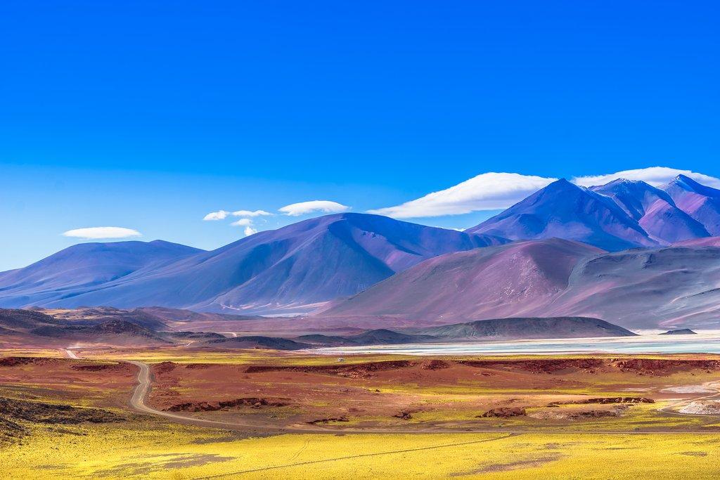 Discover Chile's Atacama Desert