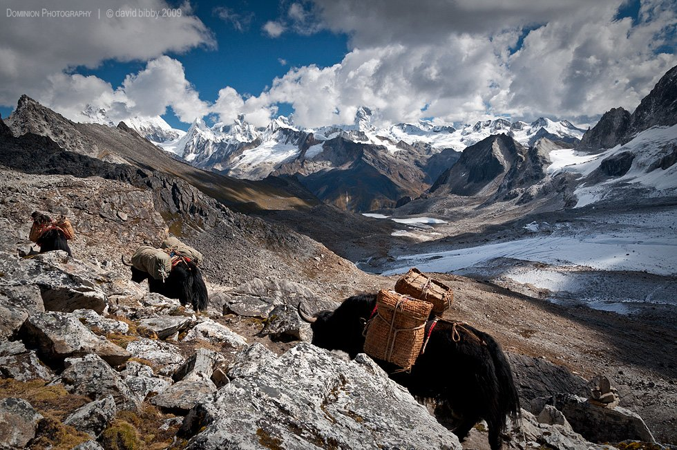 Dagala Thousand Lakes Trek - 12 Days