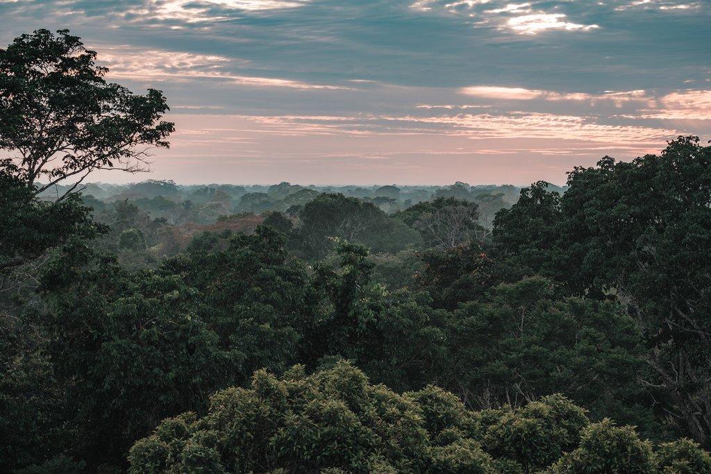 Views over the Peruvian Amazon