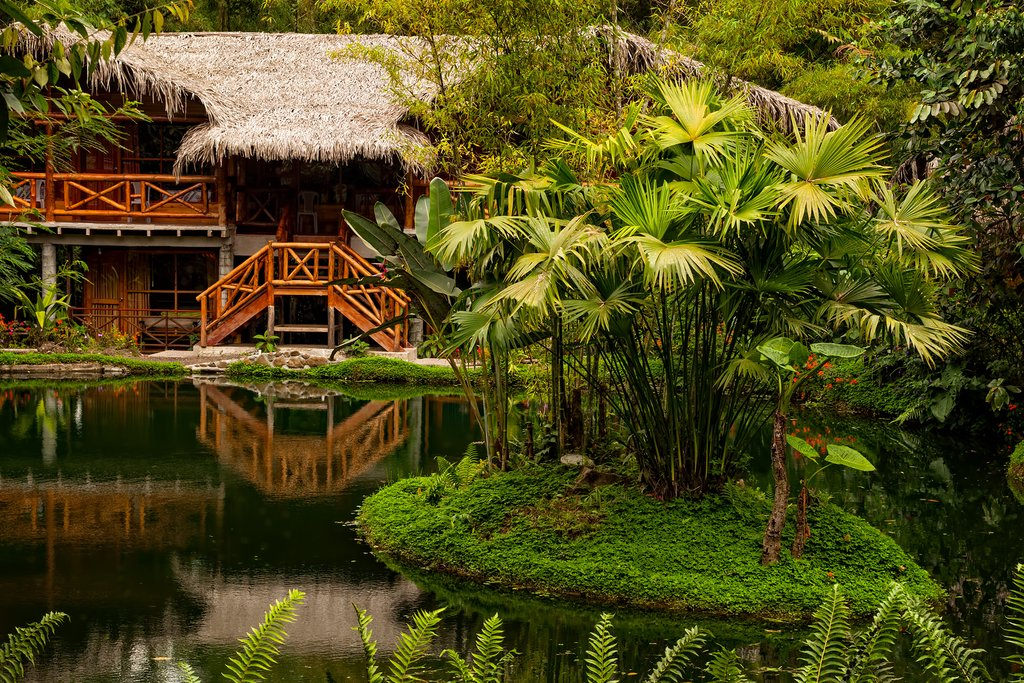 Ecuador has many lodges in the middle of the Amazon rainforest