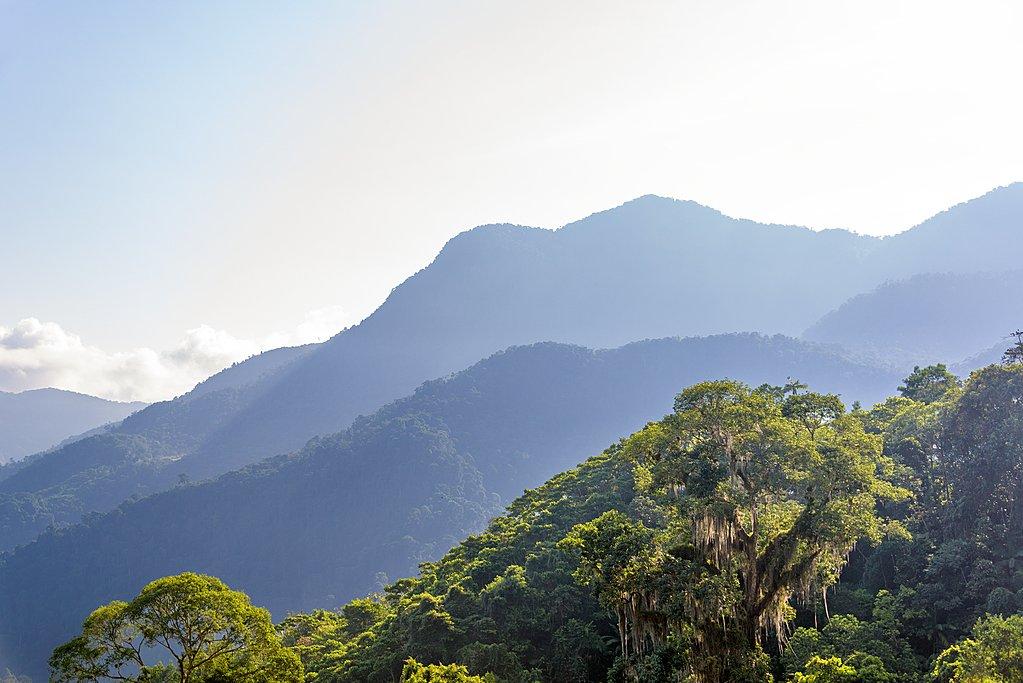 Cartagena, Tayrona Park, Arrecife and Cabo San Juan - 9 days