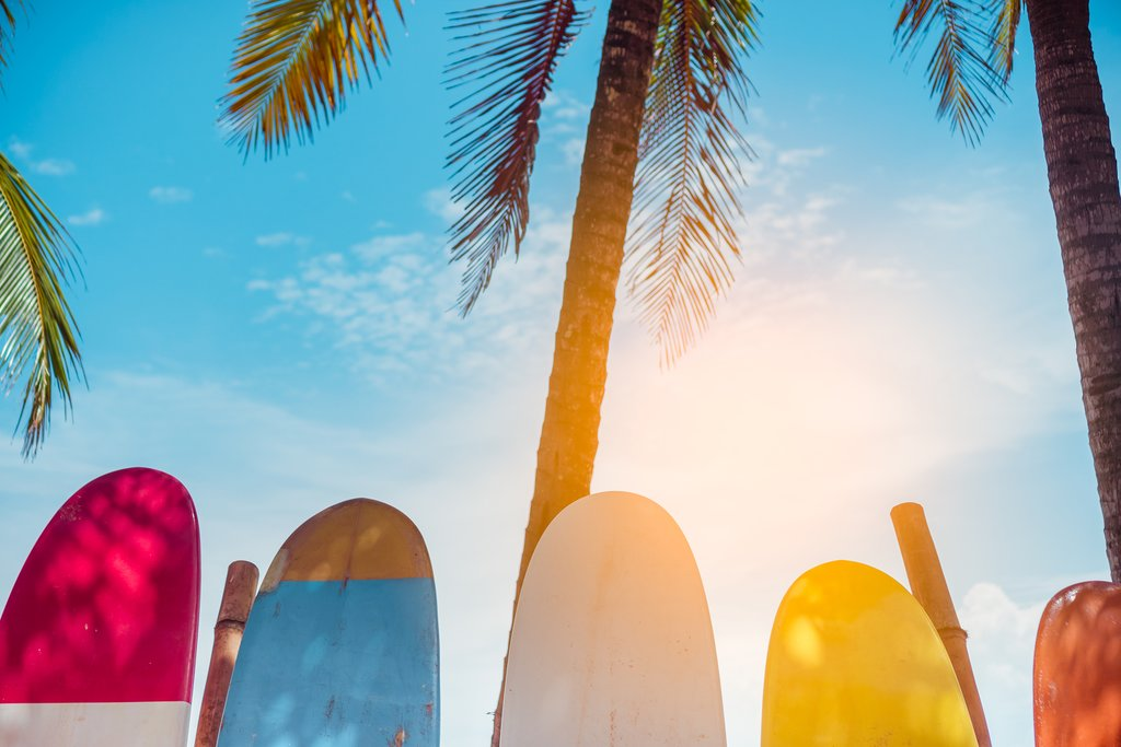 Surfboards lining the beach in Puerto Viejo de Talamanca