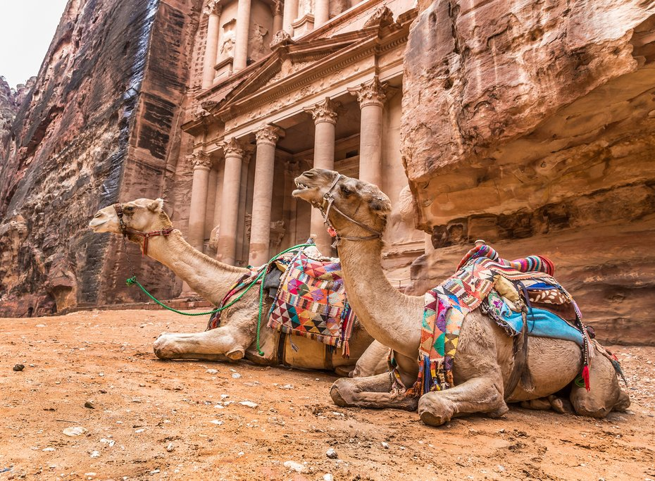 Bedouin camels rest outside the Treasury at Petra
